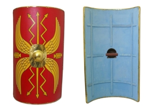 Scotum shield