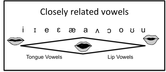 Closely Related Vowels